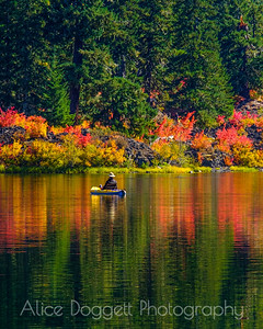 Reflections Of Fall (Vertical)