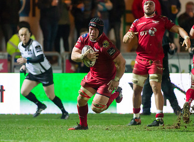 Scarlets v Zebre - Guinness PRO12 - Friday 17th February 2017