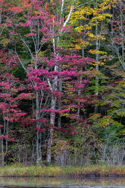 Autumn colors of Thornton Lake