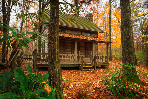 In A Cabin In The Woods...
