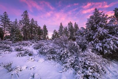 Colorful Christmas Sunset