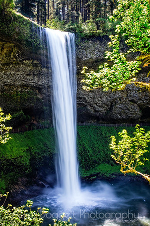 South Falls Vertical, Silver Falls State Park, Oregon