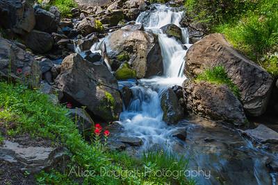 Waterfall Along Canyon Creek, Central Orgon