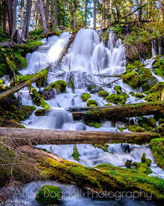 Clearwater Falls, North Umpqua River,  Southwest Oregon