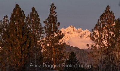 Early Morning Alpenglow On Broken Top Mountain