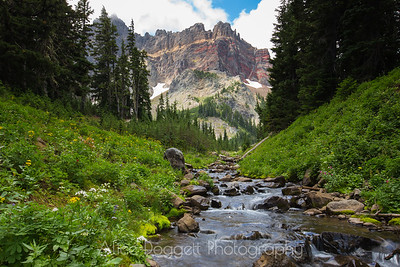 Three Fingered Jack From Canyon Creek, Central Oregon