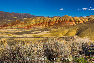 """Toes,"" Painted Hills, John Day Fossil Beds National Monument, OR"
