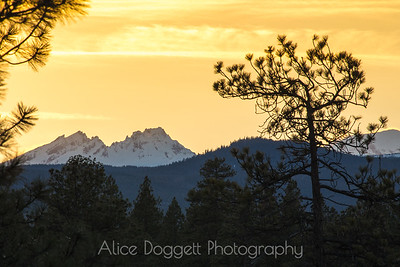Broken Top At Sunset, Shevlin Park, Bend, OR