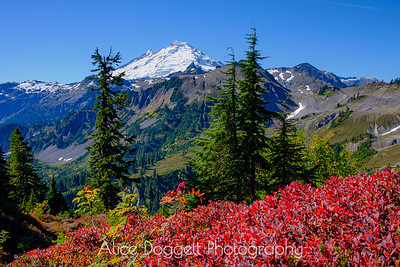 Fall Splendor In The North Cascades