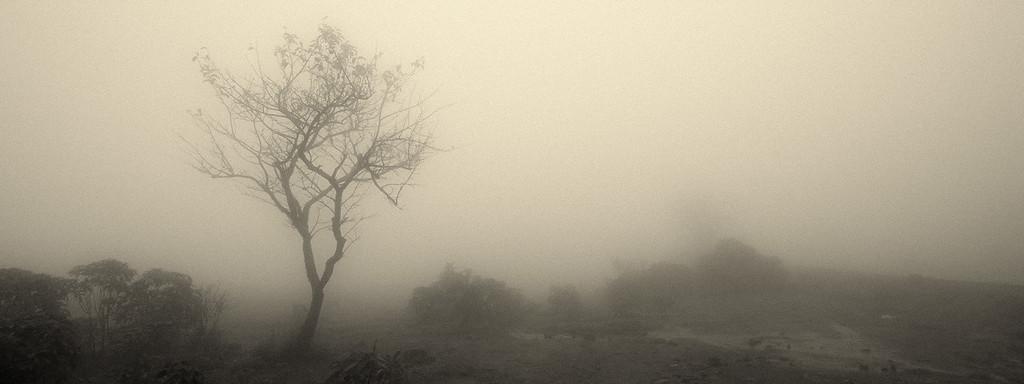 I tried to catch some Fog - but I Mist