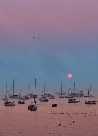 Sunrise 2020