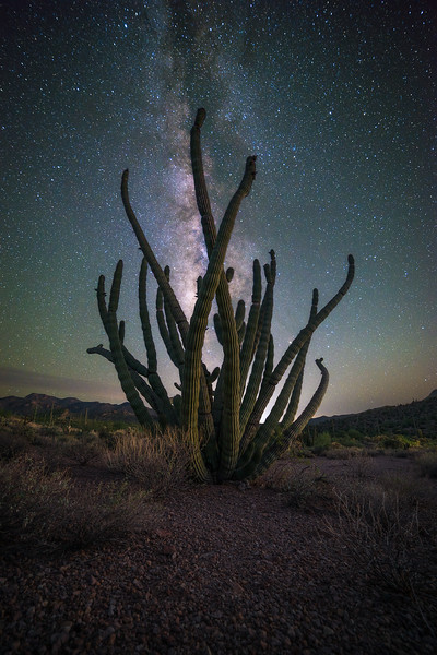 Made from 10 light frames (captured with a NIKON CORPORATION camera) by Starry Landscape Stacker 1.4.4.