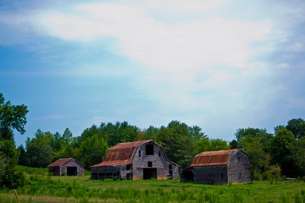 Old Barns - Silk Hope, NC