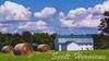 Barn located in rural Snow Camp North Carolina