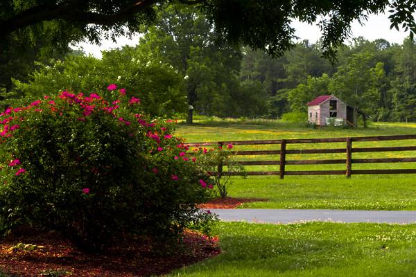 Spring Ranch