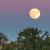 Super moon rise on November 13, 2016.