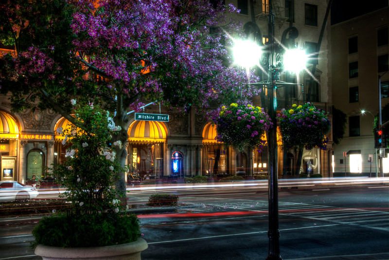 Beverly Hills Blooms~<br /> <br /> Beverly Wilshire Hotel at the intersection of Wilshire Boulevard & Rodeo Drive<br /> Beverly Hills, CA.