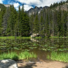 Nymph Lake~ Rocky Mountain National Park