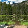 Nymph Lake~ Rocky Mountain National Park