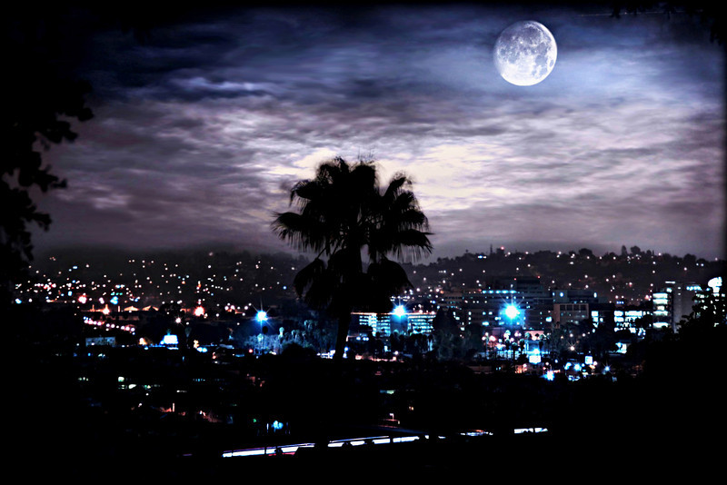 Supermoon March 2011~<br /> <br /> Los Angeles, Ca.