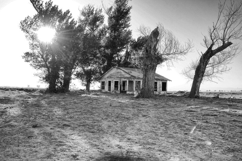 Foreclosure ~<br /> <br /> Abandoned home surrounded by it's creepy bodyguards<br /> <br /> Palmdale/Lancaster, Ca.
