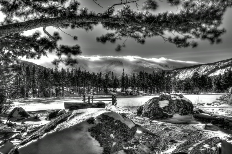 Sprague Lake Black & White~ Rocky Mountain National Park