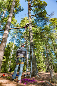 Paul Smith's College Challenge Course