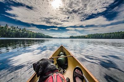 Canoeing Dog