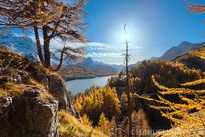 Lake Sils, Silsersee