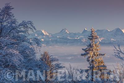 Blick vom Grenchenberg auf die Berner Alpen