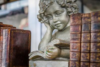 Angel reading books