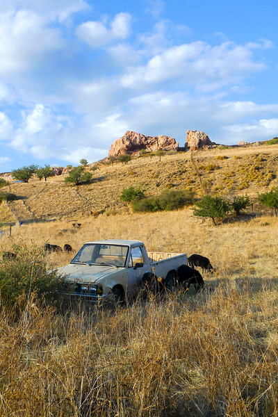 abandoned pick-up truck