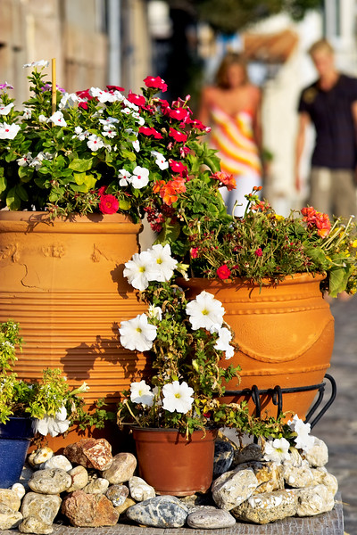 Street scene with flowering plants in Molyvos, Greece