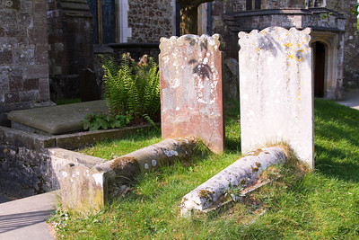 Gravestones in a sunny country cemetery