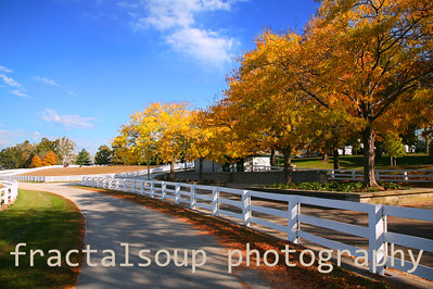 Kentucky Horse Farm with Beautiful White Fences