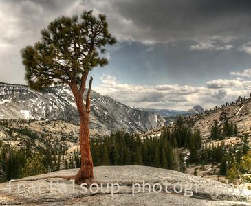 Tioga Pass Road in Yosemite, Half Dome in distance