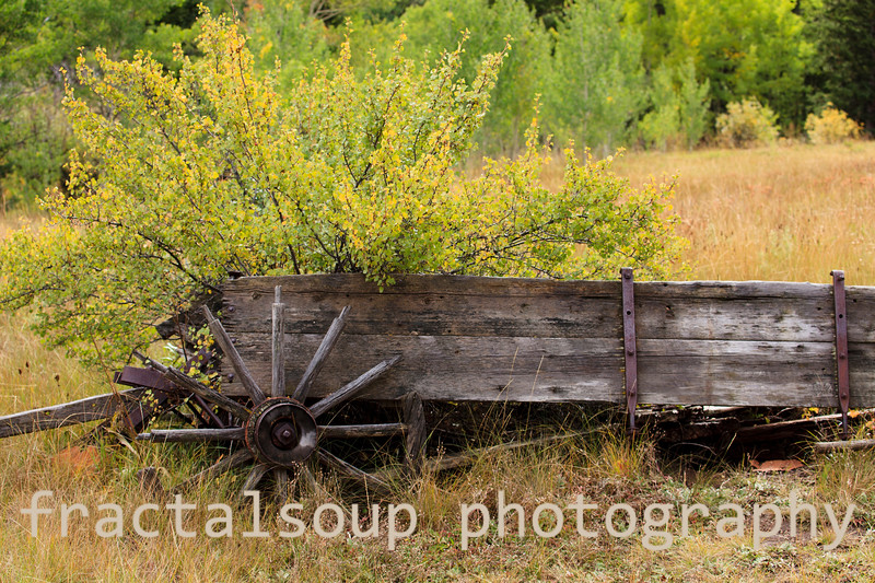 Antique Farm Wagon