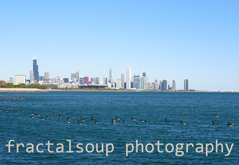 Chicago Skyline1