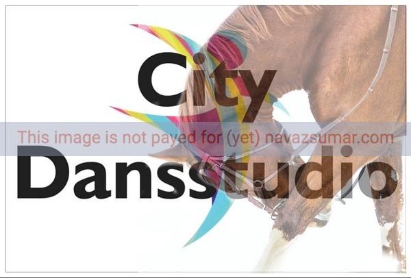 Citydans studio