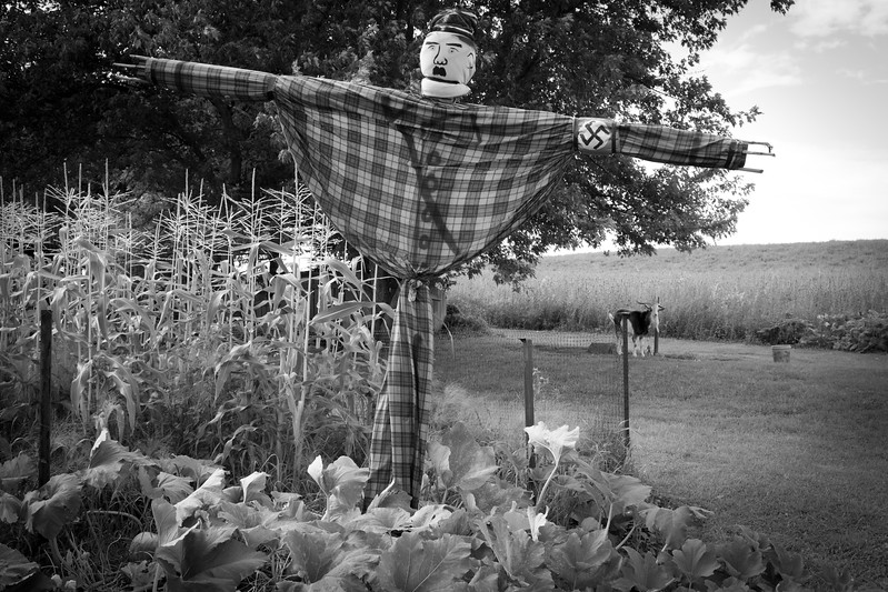 8/18/2018. PA. An Adolf Hitler scarecrow watches over fields of corn.