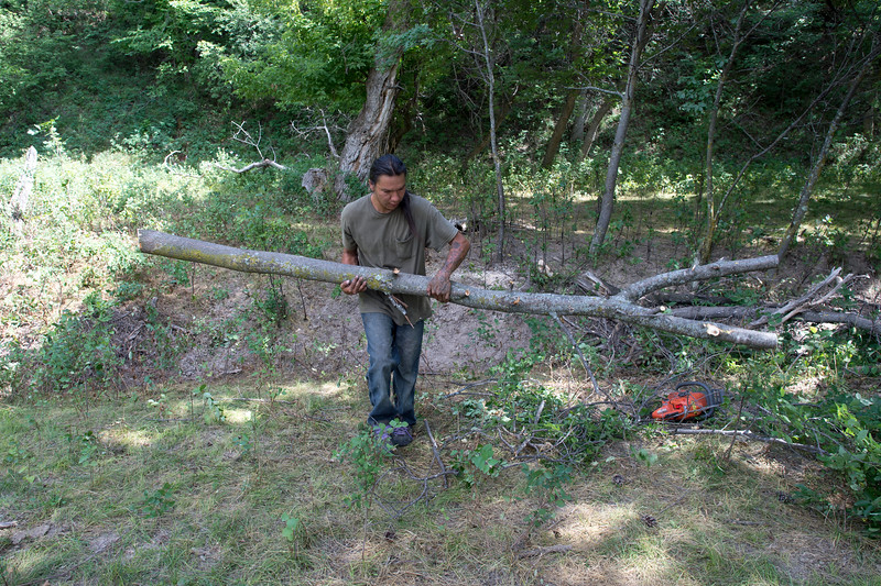 """Moses, the grandson of a Lakota medicine man harvests the Y shaped """"man"""" which will mark the entrance to the Sundance circle."""