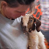 June 8, 2007<br /> <br /> 10 Minutes Old<br /> <br /> Went to the San Diego Co. Fair today and got to see a goat give birth to a couple kids. T'was amazing.
