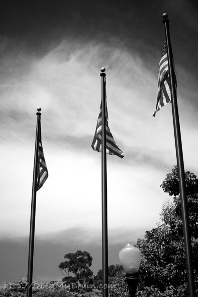 June 26, 2007<br /> <br /> Flags