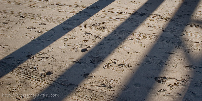 January 13, 2007<br /> <br /> Prints in the Sand