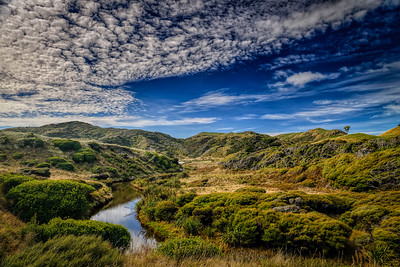 The Walk To Wharariki Golden Bay New Zealand