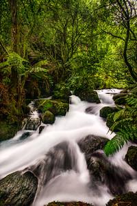 A Silver Ribbon Through The Water Meadow Te Waihou Walkway Waikato