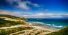 Solace in Dunedin<br /> Otago Peninsula