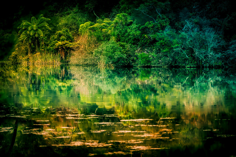 A green sort of a day<br /> Waikato River