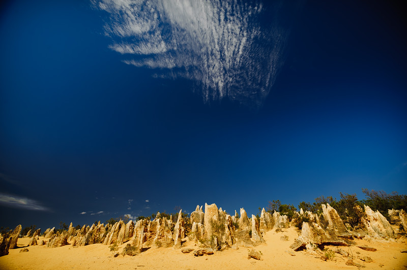 The Pinnacles<br /> Nambung National Park<br /> Western Australia