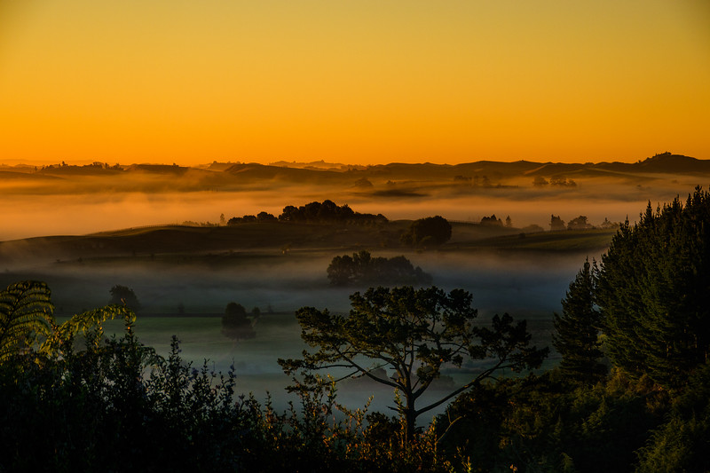 The Edge of The Shire at Dawn